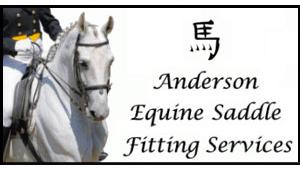 anderson-equine-logo